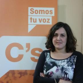 Ciudadanos reclama que se ponga en marcha la campaña de sensibilización contra la violencia infantil aprobada en el Pleno de Octubre
