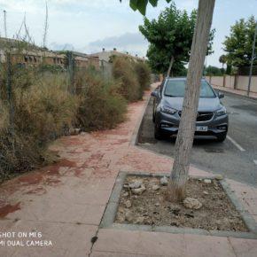 Ciudadanos Mutxamel denuncia la falta de limpieza e insalubridad de las parcelas próximas al casco urbano y urbanizaciones