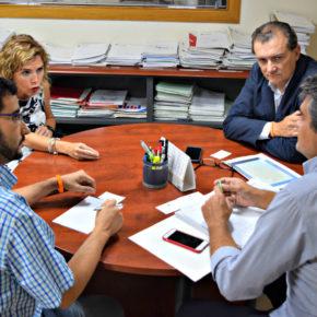 Cs propone la creación de espacio de investigación de la Xylella en el que colaboren administraciones, universidades y centros de estudio